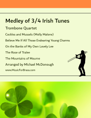 Medley of 3/4 Irish Tunes