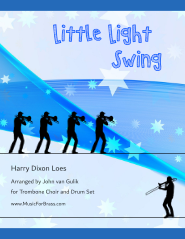 Little Light Swing