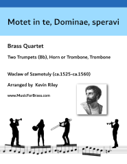 Motet in te, Dominae, speravi
